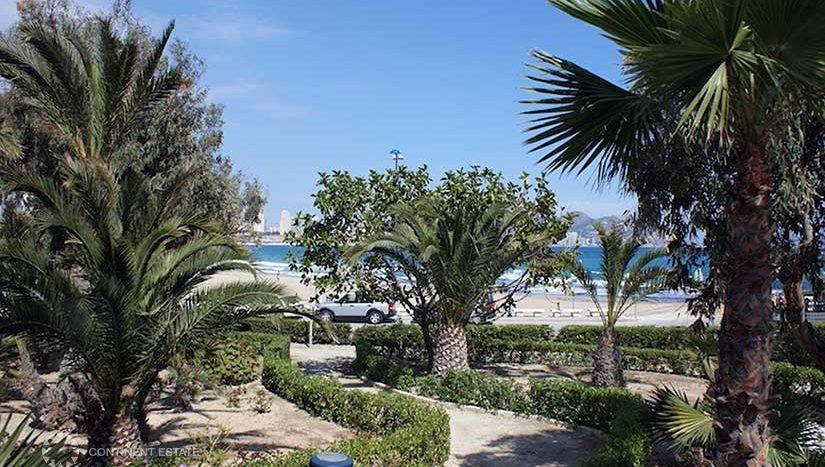 Апартамент рядом с пляжем в аренду в Испании (Коста Бланка — Benidorm)
