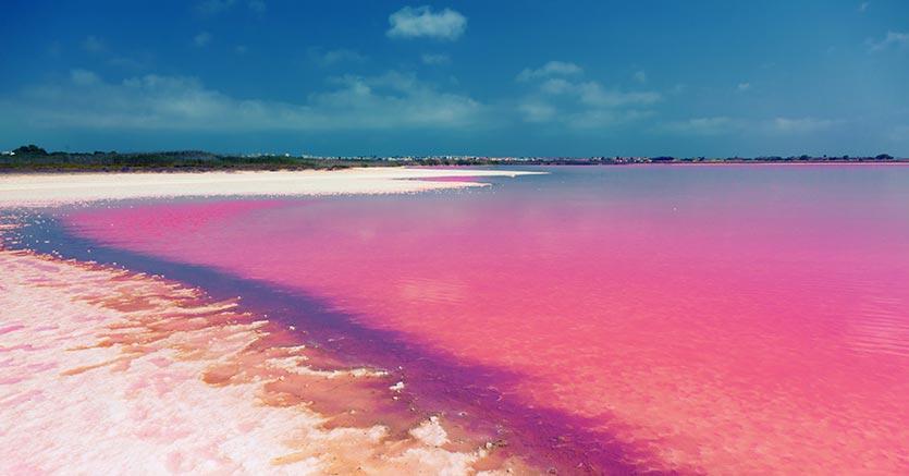 Розовая лагуна Las Salinas de Torrevieja